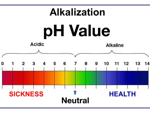 Graph showing the scale of pH values from 0 to 14
